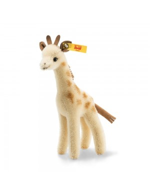 Giraffa Wildlife Giftbox